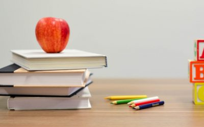 The role of debt collection for school debts