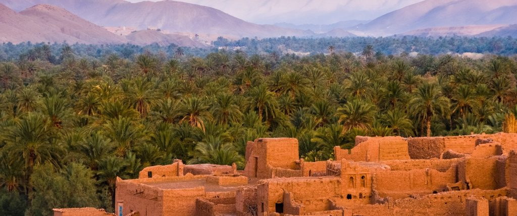 TCM debt collection morocco