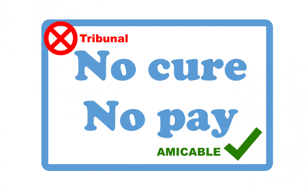 Banning no-cure-no-pay for amicable debt collection: useful?